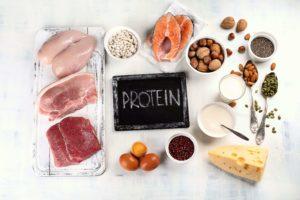 食事_タンパク質